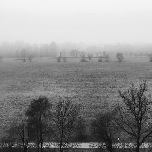 nebbia - Monza